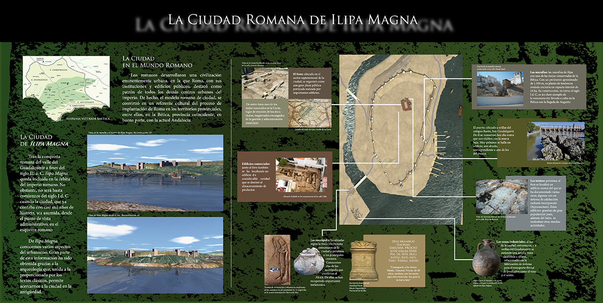 illipa_magna_museo-1